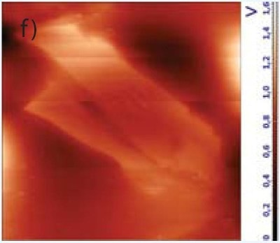 Scanning Kelvin probe microscopy of negatively and positively charged graphene. The flakes were charged by applying +3V (e) or -3V (f) voltage with conductive cantilever. Scan size 90x80 µm.