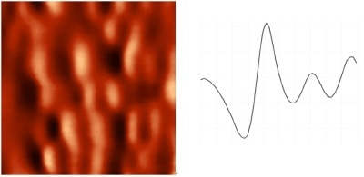 MFM images of hard disk surface obtained in ambient air and in vacuum. Both images are of 1x1 µm