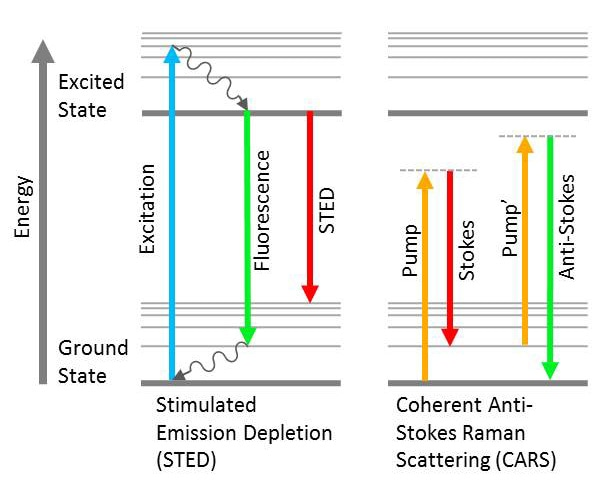 Jablonski diagrams showing multiple different NLO responses. Dashed lines indicate virtual states.