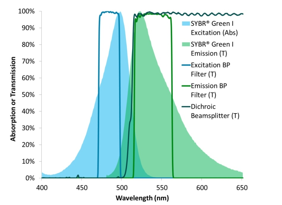 Excitation and emission spectra of SYBR® Green I DNA binding stain overlaid with the transmission spectra of a set of optical filters designed to optimize detection and visualization of this fluorophore.