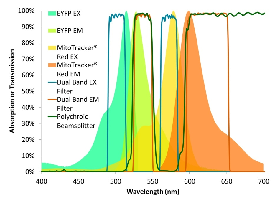 Excitation and emission spectra for both EYFP and MitoTracker® Red overlaid with the transmission spectra of a dual-band filter set designed for these fluorophores.