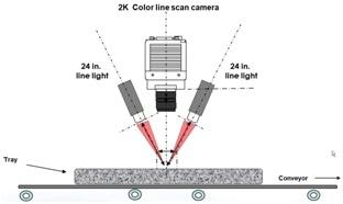 line scan cameras