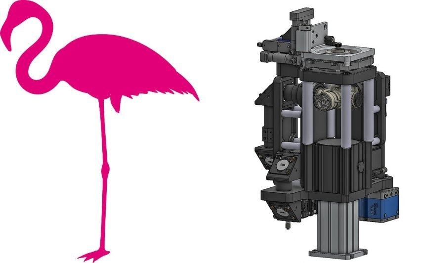This illustration of a compact Flamingo light sheet microscope (right) with L-SPIM configuration (see text) is reminiscent of the one-legged sleeping bird. (Image: Image: Morgridge Institute for Research, Madison, WI)