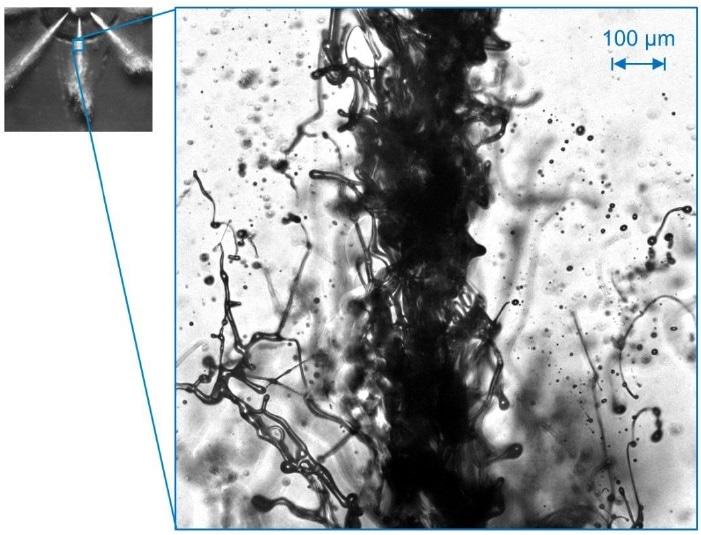 New Double-Pulse Backlight Microscope