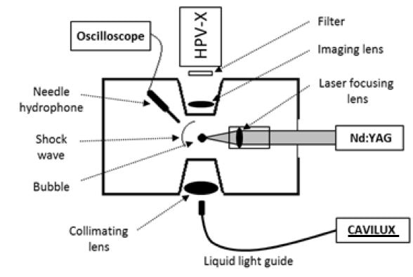 Schematic of experimental setup.