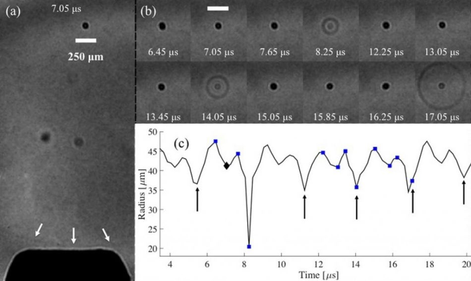 Images extracted from a high-speed sequence recorded at 5 mio fps, of cavitation activity in the f0/2 regime. (a) The whole field of view, depicting the NH tip position relative to the activity, with a shock wave (arrowed white) incident to it. (b) Selected images representing the cavitation oscillation dynamics, including three strong collapses, and coincident shock wave emission. The entire image sequence is available, in movie format, as supplementary material. (c) Radius-time curve based on a dark pixel counting algorithm, for the time interval under investigation. Diamond and squares indicate the specific images represented in (a) and (b), respectively. Scale bar represents 250 µm.