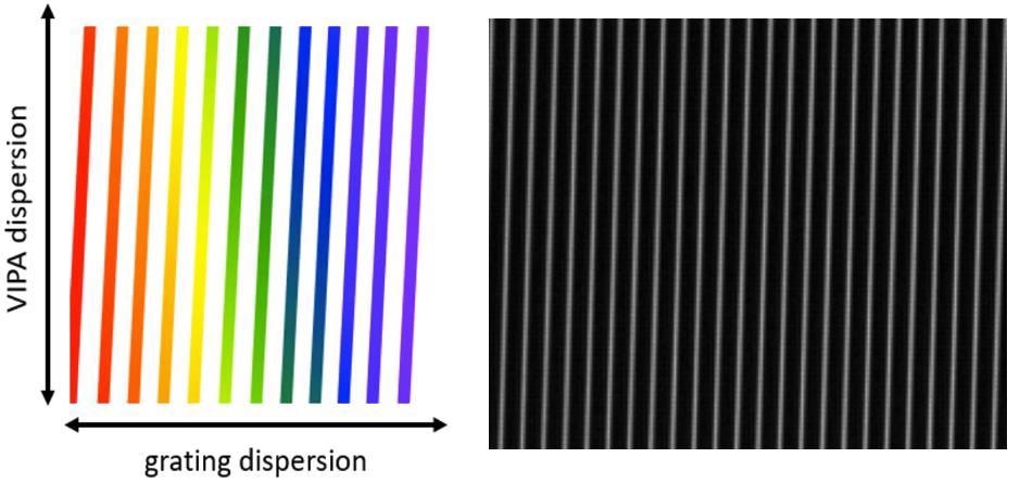 """Left: Schematic of the display seen at the spectrometer sensor when the crossed etalon (or VIPA) and grating are illuminated with broadband (""""white"""") light. The vertical stripes are spaced by one etalon FSR in the horizontal direction. In the chart, red represents longer wavelengths; blue shorter wavelengths. A typical screen shot from the sensor is shown on the right. Only a small portion of the full sensor is shown, covering 23 FSRs of the etalon horizontally, and 0.5 FSR vertically."""
