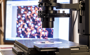 The Potential of the Pulsed Force Kelvin Probe Force Microscope