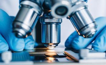 Improving Bioimplants Using Microscopic Imaging