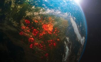 Optical Systems for the Early Detection of Forest and Wildfires