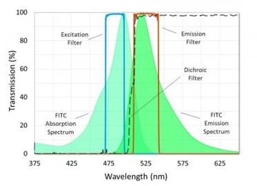 Filters for Life Sciences: Ultra Fluorescence Filter Sets