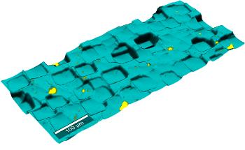 WITec TrueSurface Microscopy-Topographic Raman Imaging