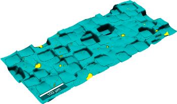 WITec TrueSurface Microscopy:Topographic Raman Imaging