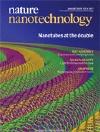 Nature Nanotechnology: Nature Publishing Group Journal