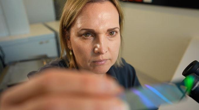 Hi-Tech Slide to Speed up Cancer Diagnosis