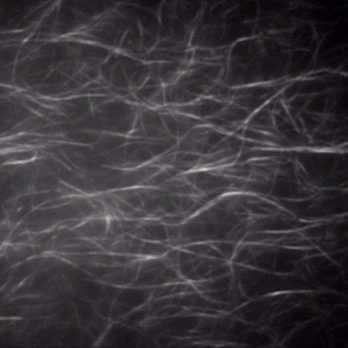 Light-Powered Molecular Movement Through Synthetic Self-Made Fibers.