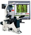 Leica and Molecular Devices Launch Multi-Dimensional Live Cell Imaging Package