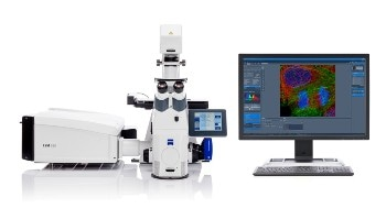 New Multiplex Mode for Zeiss Airyscan 2 Enables Fast and Gentle Confocal Microscopy