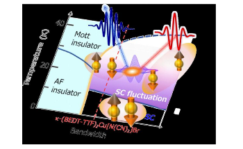 Ultra-Short Laser to Detect Second Harmonic Generation in Organic Superconductors