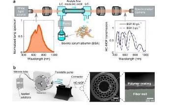 Photonics Meets Surface Science in a Cheap and Accurate Sensor for Biological Liquids
