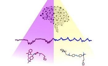 Brain State Transitions are Controlled Using a Light-Responsive Molecule