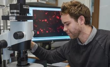 New Technique Enables Human Organs to be Studied with Micrometer Precision