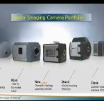 Ultrasensitive Imaging Technologies for Microscopy