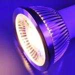 Gallium Nitride LED Lighting