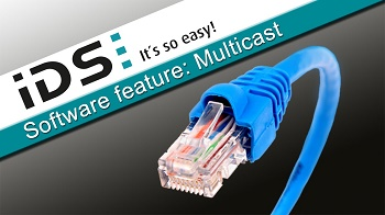 Software Feature: Multicast